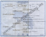 klaic_6pedigree